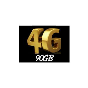 90GB Internet