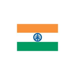 +91 India